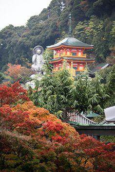 Chougosonshi-ji #japan #nara