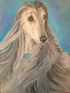 Afghan Hound 11x14 oil painting