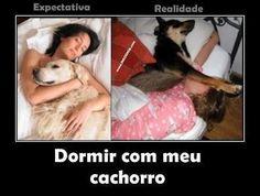 Dormir com meu cachorro...