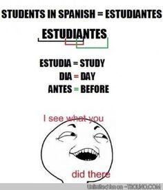 Best description of a student.