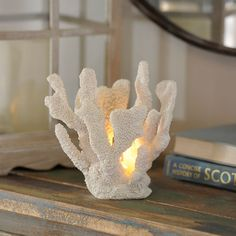 White Coral Night Light | Kirklands