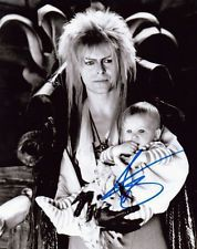 Labyrinth Jareth The Goblin King David Bowie 8x10 Autographed / Signed Photo RP