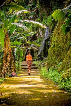 Exploring Gunung Kawi Join us on an upcoming #Bali #Retreat ❀ Floating Leaf Eco-Retreat   #Yoga #Wellness #detox #Art #Culture  http://balifloatingleaf.com/upcoming-yoga-retreats/ ✯ Awarded best retreat center in Asia ✯ #spa #surf #Eco #Retreat #sustainable #Wellness #luxury #5star #Organic #BaliYoga #YogaRetreat #detox #fun #Food #Beach #Beauty ❀ Rated #1 on TripAdvisor with a perfect 5 Star rating- come see why! ❀ Floating Leaf Eco-Retreat ❀ Sukawati, Bali, Indonesia ❀