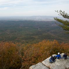 Mount Cheaha, AL    The highest point in Alabama