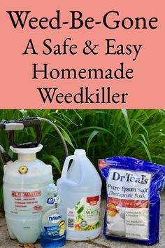 outdoor gardens Weed-Be-Gone is a safe amp; easy homemade weedkiller made with three common household ingredients. Just spray it on and it will kill your pesky weeds. Garden Yard Ideas, Lawn And Garden, Garden Layouts, Garden Projects, Diy Projects, Organic Gardening, Gardening Tips, Organic Fertilizer, Organic Farming