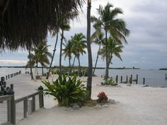 Florida keys road trip - top 5 things to do (by One Modern Couple)