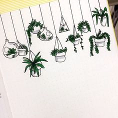 Hanging plant doodles in my Bujo I did before journal entries :)