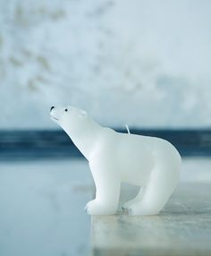 candle. Poor polar bears. Not only are we melting their habitat, now we're melting them.