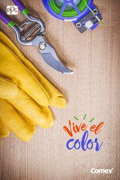 ¡Vive el color de tus pasatiempos! Aprovecha la temporada de lluvias y haz que tu jardín se llene de mucho color.  #ViveElColor #Colorful #Inspiracion #Colores #Jardin