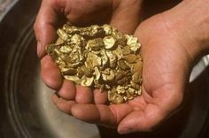 Gold nuggets found in Oregon.