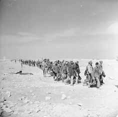 Italian & German troops surrendering in 1000s, dehydrated, surrounded, abandoned by retreating Rommel & Aftikakorps: