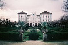 Curia | by sofiamottamartins
