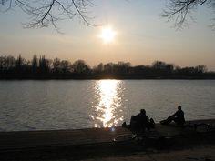 ver, vista al lago, estanque, el agua