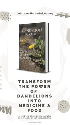 You will learn how to bring the healing joy of dandelions into your daily skincare routine, making salves, lip balm healing oil or dandelion sunscreen. Healing Oils, Healing Herbs, Medicinal Herbs, Herbal Remedies, Natural Remedies, Diy Beauty Tutorials, Dandelion Recipes, Diy Natural Beauty Recipes, Vegan Recipes Plant Based