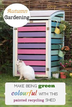Autumn Gardening on how make being green colourful with a painted recyclcing shed for your garden. Simple ideas.