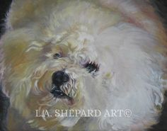 """A Bichon Frise dog art portrait print of an LA Shepard painting 11x14"""". Here's a wonderful tribute to your best friend and favorite breed- the Bichon! from an original painting by L.A.Shepard, whose unique, beautiful work has been collected around the world. Your print will be individually signed under the image by the artist, and initialed on the image. Copyright text is for display purposes only and will not appear on your artwork. The image is 11x14 inches and is printed on 13x19 inch..."""
