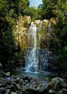 Minnamurra Falls,Kiama NSW