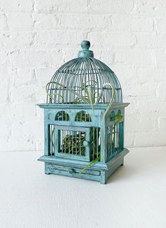 Blue Distressed Teak Bird Cage Air Plant Garden