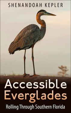 "Soon to be published book ""Accessible Everglades"""