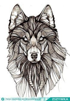 Zobacz zdjęcie Wilk / Wolf w pełnej rozdzielczości