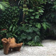 30 Top Tropical Garden Ideas - Home/Decor/Diy/Design Tropical Garden Design, Tropical Backyard, Backyard Garden Design, Tropical Landscaping, Tropical Plants, Backyard Landscaping, Tropical Gardens, Bali Garden, Balinese Garden
