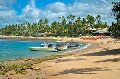 PRAIA DO FORTE (BAHIA) Situada no município de Mata de São João, a 80 quilômetros de Salvador, a praia é um dos destinos mais badalados do litoral norte da Bahia. Tem uma boa infraestrutura turística: resorts, restaurantes e pousadinhas charmosas. Um dos destaques é o centro de visitantes do Projeto Tamar.