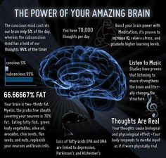 The Power of Your Amazing Brain infographic, courtesy of twitter.com/neuroscience