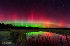Aurora Photos: Northern Lights Dazzle in Night-Sky Images | LiveScience