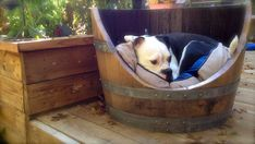 Handcrafted Wine Barrel Dog Bed by NutsNBoldtsCrafts on Etsy, $175.00   Love this!  Such an adorable dog, too!