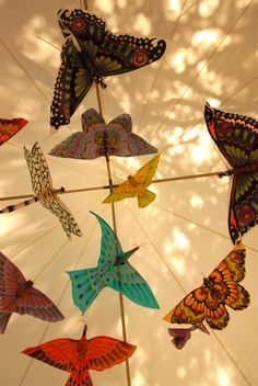I am always looking up for photos. Imagine these colourful creatures flapping around your wedding marquee! For more natural, unposed photos celebrating weddings visit Marquee Wedding, Looking Up, Creatures, Wedding Photography, Weddings, Natural, Photos, Color, Pictures