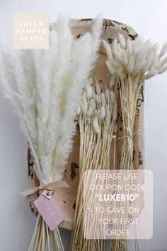 "Luxe B Pampas Grass is the leading online shop with dried flowers and pampas grass for your boho home decor and wedding decor. Please use coupon code ""LUXEB10"" for 10% off your first order Instagram @luxebpampasgrass Boho Wedding, Floral Wedding, Fall Wedding, Wedding Flowers, Dream Wedding, Paris Wedding, Décor Boho, Boho Chic, My Sun And Stars"