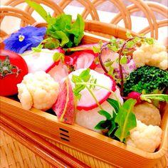 Japanese food bento 蛸の手毬寿司のお弁当