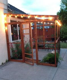 When our daughters cat, Hope became blind this year we began to look for ways to enrich the life of this previously in/outdoor cat. So our friend built this catio for her. Outdoor Cat Enclosure, Diy Cat Enclosure, Reptile Enclosure, Cat Garden, Balcony Garden, Cat Condo, Outdoor Cats, Cat Furniture, Diy Stuffed Animals
