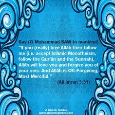Ayat on Allahs Love Islamic Quotes