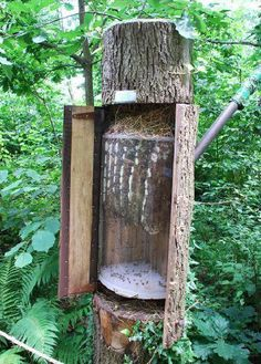 I love tree hives; this one has a great observation feature with what looks like a curved plexiglass window.