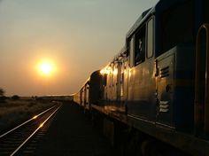 Desert Express – Jewel of Namibia - togreise i Afrika Abandoned Train, Train Journey, Luxury Life, Safari, Cruise, Africa, Tours, Explore, World
