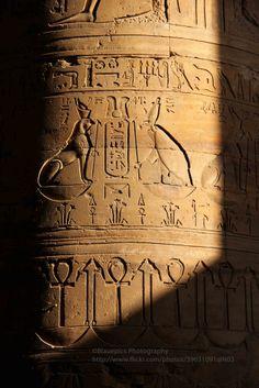 Edfu, Temple of Horus, pilar in sunset