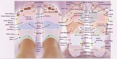 REFLEXOLOGY FOOT CHART - Tips & guidelines for foot reflexology charts!