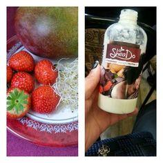 Sheado Strawberry Chocolate Protein Fix
