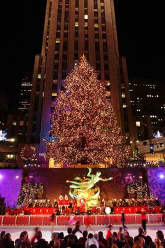 Arguably one of the most iconic symbols of the holiday season, the Rockefeller Center Christmas tree in New York City is quite the sight to behold. NYC New York City Travel Honeymoon Backpack Backpacking Vacation Christmas Tree Bucket, New York Christmas Tree, Ribbon On Christmas Tree, Winter Christmas, Christmas Lights, Christmas Time, Xmas, Christmas Scenes, Holiday Lights
