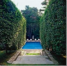 pool surrounded by privacy landscaping Outdoor Rooms, Outdoor Gardens, Outdoor Living, Outdoor Ideas, Beautiful Pools, Beautiful Gardens, Jacuzzi, Swimming Pool Designs, Swimming Pools