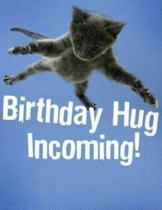 Top 36 Funny Happy Birthday Quotes - Happy Birthday Funny - Funny Birthday meme - - Top 36 Funny Happy Birthday Quotes birthday The post Top 36 Funny Happy Birthday Quotes appeared first on Gag Dad. Funny Happy Birthday Wishes, Birthday Wishes Quotes, Happy Birthday Greetings, Funny Birthday Cards, Birthday Memes, Happy Birthday Quotes For Him, Happy Birthday Facebook Post, Happy Birthday Animals Funny, Happy Birthday Beautiful Friend