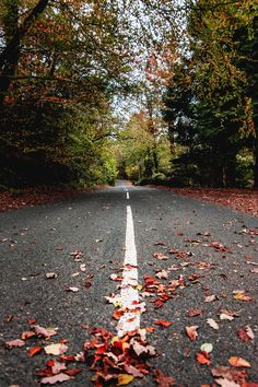 lucapixels: "