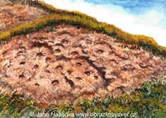 kamenná sluníčka v Českém středohoří, akvarel Jana Haasová Country Roads, Paintings, Watercolor, Songs, Landscape, Art, Pen And Wash, Art Background, Watercolor Painting