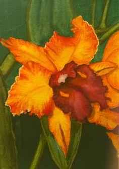 """Cattleya"" watercolour on paper by the artist Esperanza"