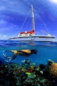 Snorkel in a shipwreck. Check.