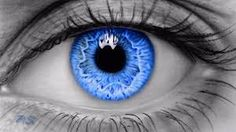 Image result for eyes drawing