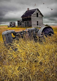 1000+ images about Farm and barn paintings on Pinterest | Barns ...