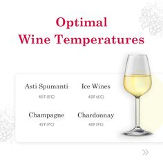 Wine type and their serving temeratures Wine Temperature, Must Have Gadgets, The Last Drop, Perfect Glass, Types Of Wine, White Wine, Alcoholic Drinks, Champagne, Wine Types