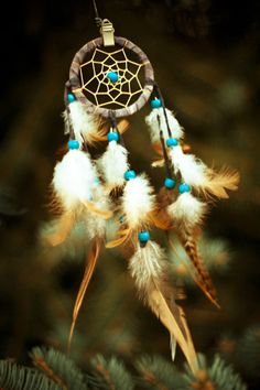 dream catcher - love the turquoise with the browns